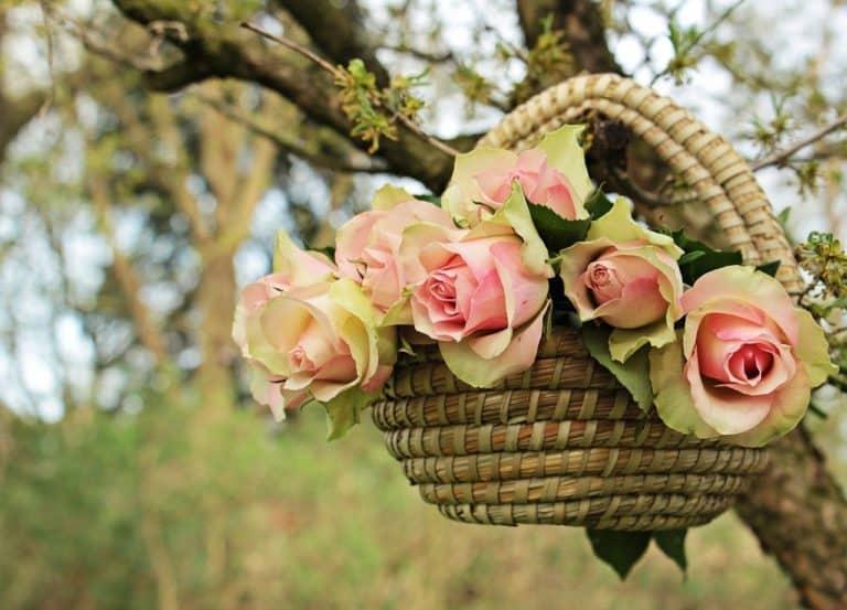 סלסלת פרחים ליום הולדת